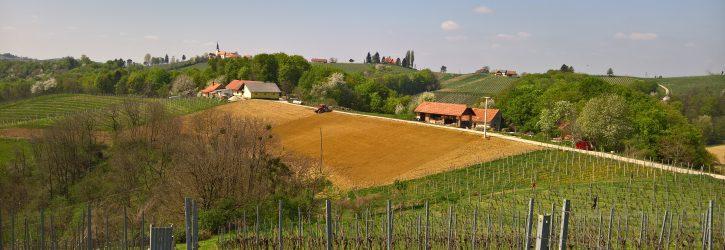 ekološka kmetiija Šoster